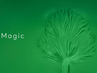 Magic - watch trailer