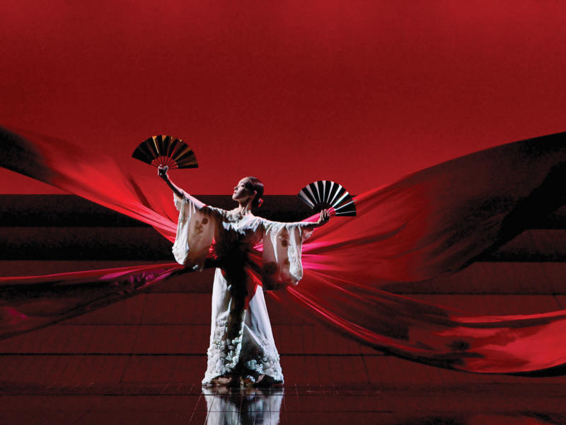 Madam Butterfly, 2006 (c) Robert Piwko