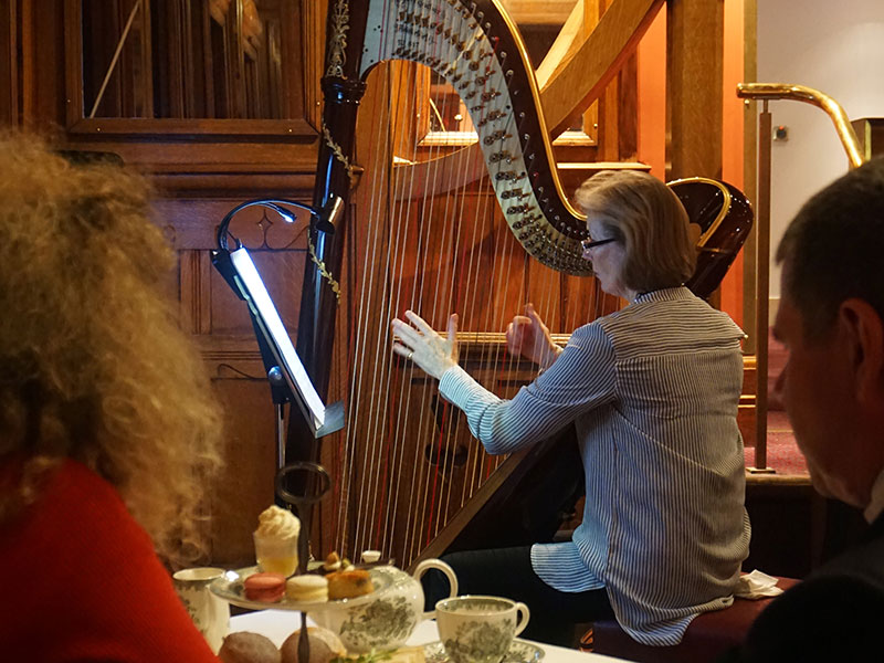Side on pic of harp, with afternoon tea in the foreground